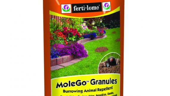 Moles, a Gardeners Nightmare!